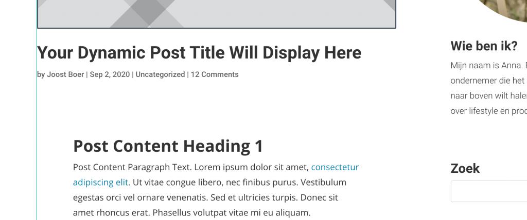 Divi blog example.